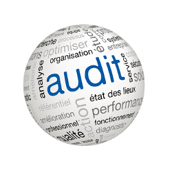audit_qualite_s